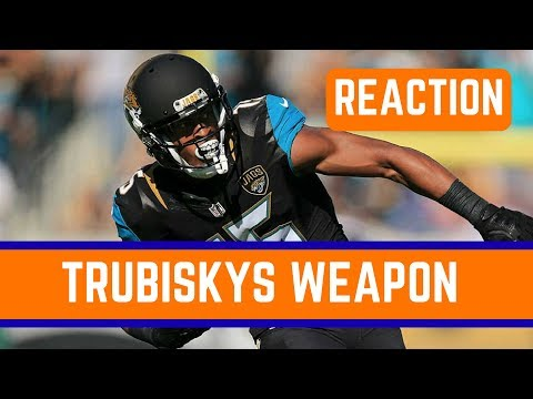 Chicago Bears Sign Allen Robinson Reaction and Analysis