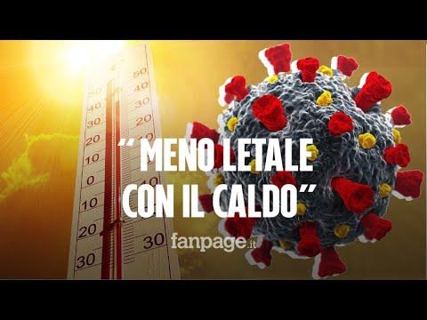 """L'immunologo Silvestri: """"L'estate ci aiuterà a battere il coronavirus: è meno letale con il caldo"""""""