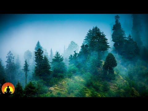 3 Hour Zen Meditation Music: Nature Sounds, Relaxing Music,