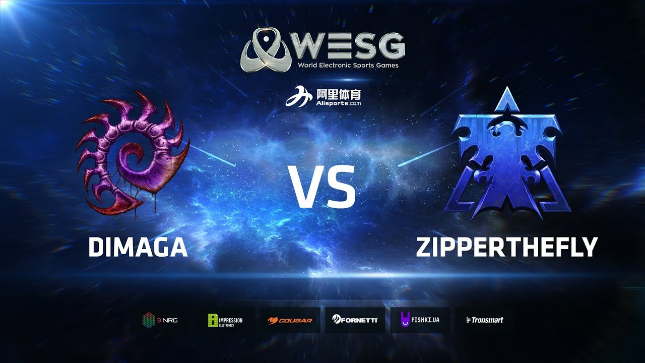 WESG Ukraine - Losers Round 2 Match 2: DIMAGA (Z) vs ZipperTheFly (T)