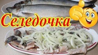 СЕЛЕДКА Рецепт / Как вкусно засолить Селедку!!!