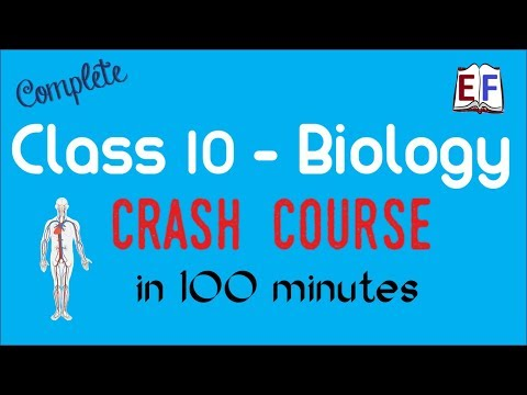 Class 10 Biology Revision in 100 minutes - YouTube