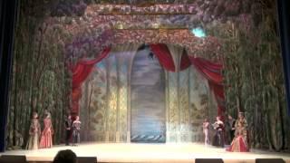 Русский балет. Видео 2(Московский государственный театр