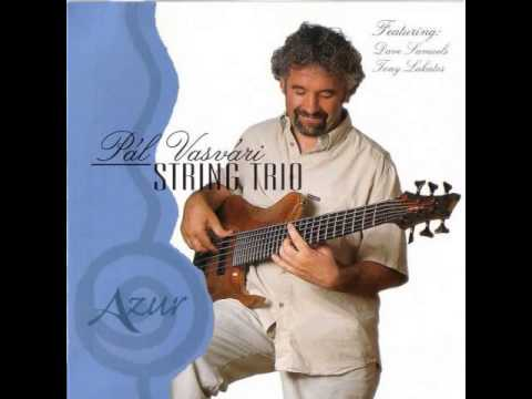 Pal Vasvari String Trio - Picasso feat. Tony Lakatos