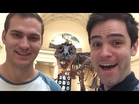 The Field Museum, Chicago: Dinos, Meteors & Bears... Oh my!