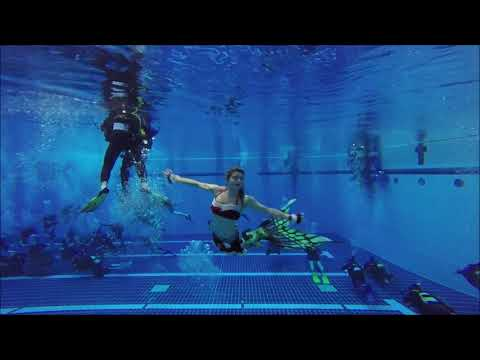 Diveworld Videos | Christmas Mermaid Practise - 16th December 2019