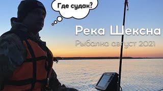 Рыбалка на реке Шексна Окунь есть а где судак