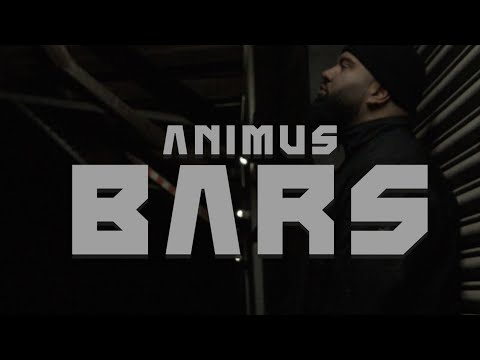 Animus - Bars