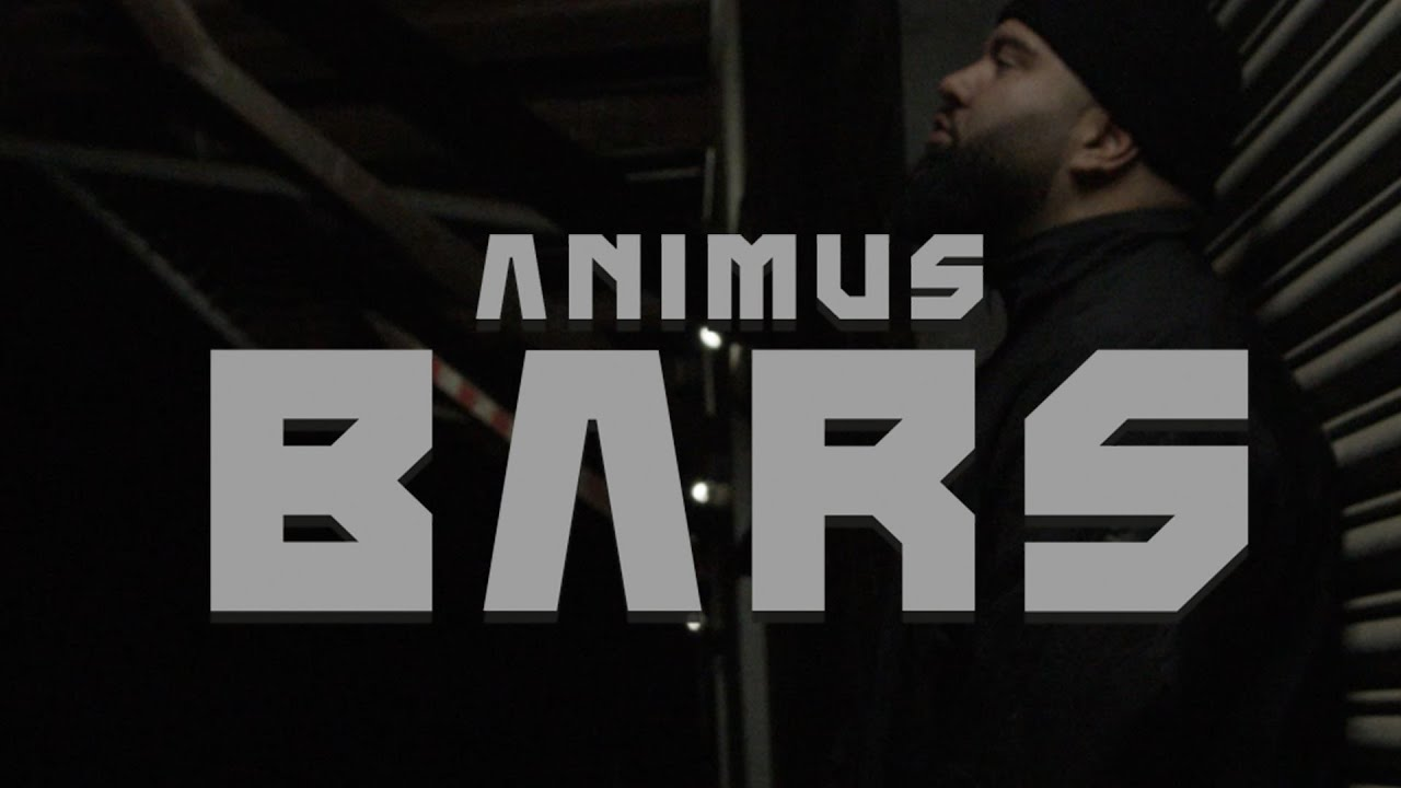 Download Animus - Bars