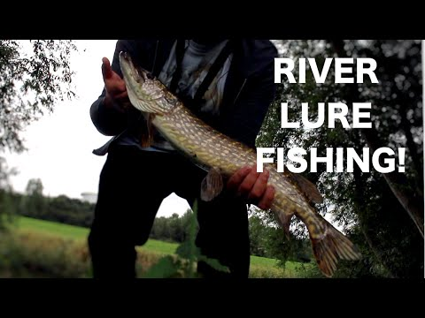 Lure fishing session on the river for pike and perch