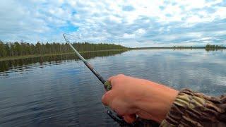 Разве такое возможно Ловля щуки на спиннинг в июне Рыбалка 2020 Карелия