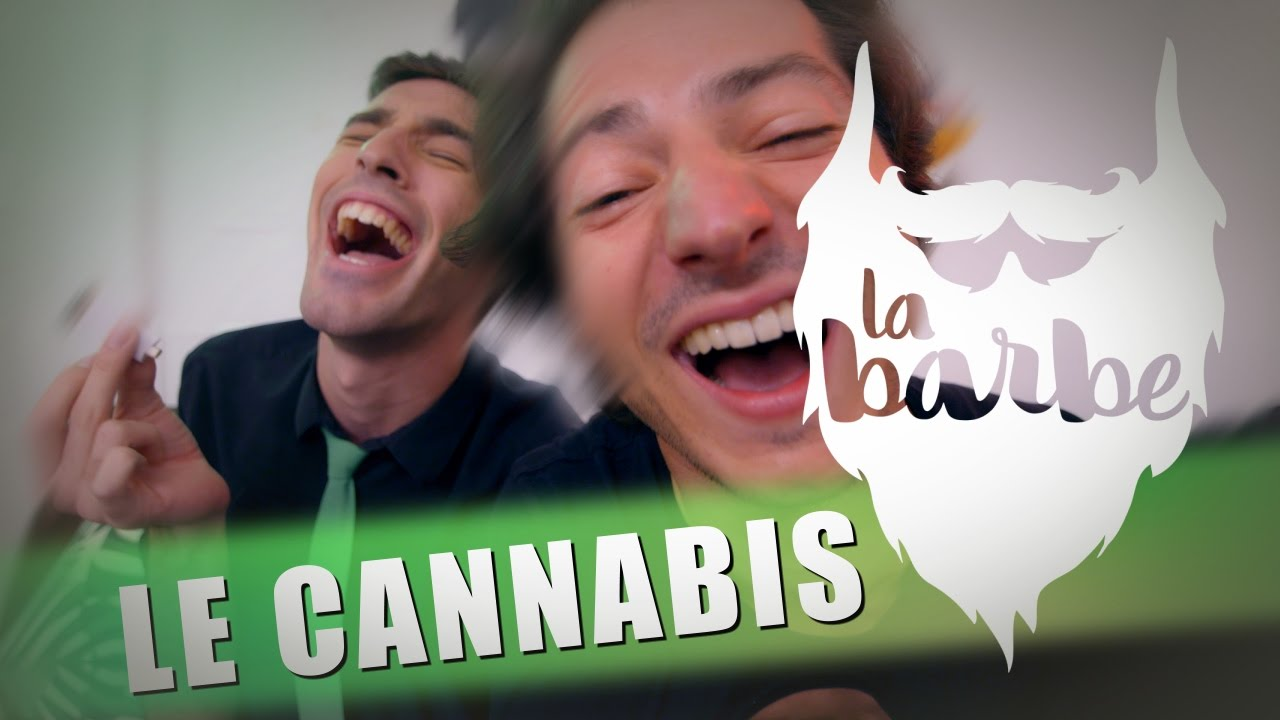 LE CANNABIS (feat. MAX BIRD) - LA BARBE