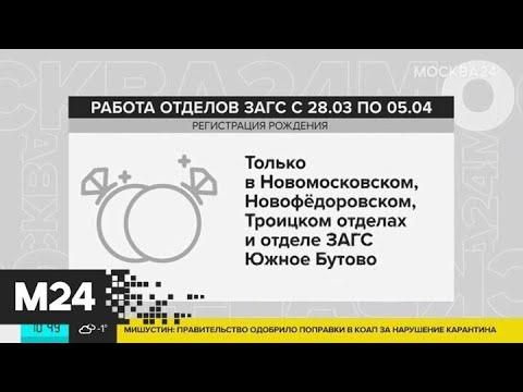 Социальные учреждения Москвы будут консультировать онлайн - Москва 24