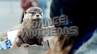 DANCE ANTHEMS hotlist / 4th week of june '18