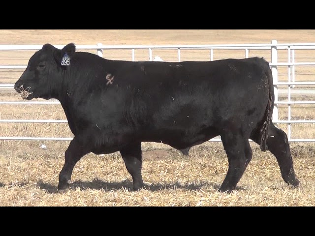 Express Ranches Lot 395
