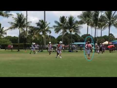 2017 Lacrosse Highlights - Palmer Viera