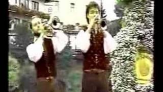 Kathreiner Musikanten - Im Blumendorf