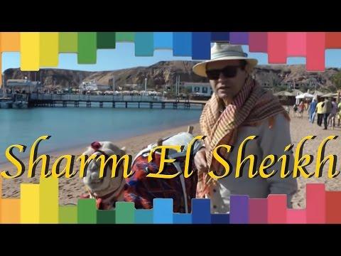 Ayhan Sicimoğlu ile Renkler - Sharm El Sheikh, Mısır