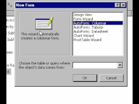 Microsoft Office Access 2000 Create a form using the Form Wizard