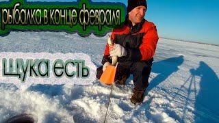 рыбалка в конце февраля на федоровском водохранилище поймал щуку
