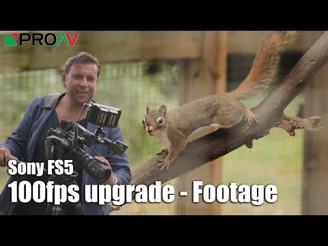 Continuous 100fps on Sony FS5 - Shot by Phillip Bloom