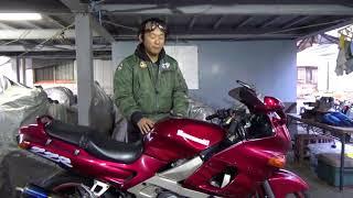 ZZR400N参考動画:ツアラー人気の基盤をつくったバイク