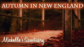 Hypnotic Sleep Story: Autumn in New England Guided Meditation