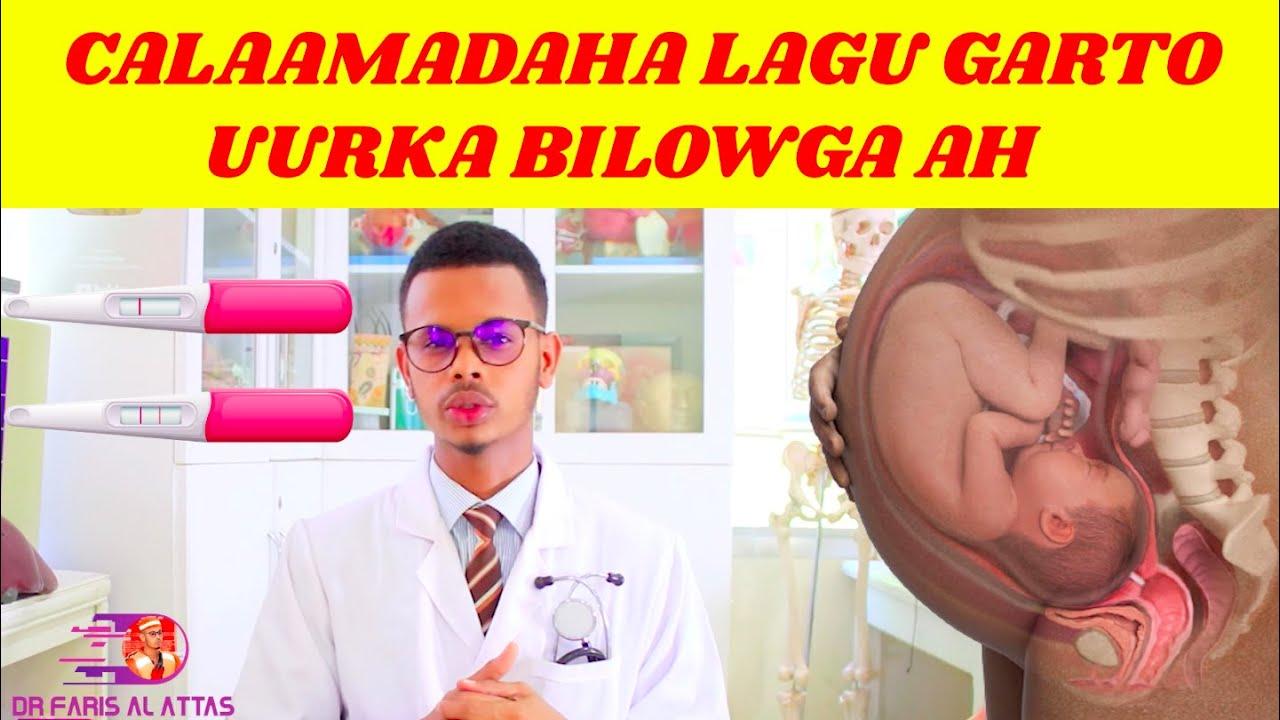 Download CALAAMADAHA LAGU GARTO UURKA BILOWGA AH. Dr Faris