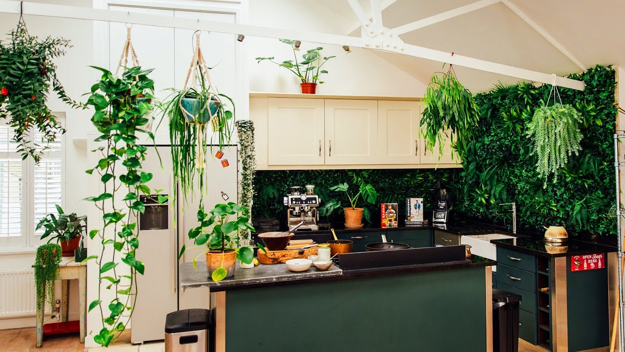 INDOOR PLANT TOUR - my tips & propagation tutorial