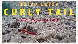 ダイソールアー カーリーテールワームの水中アクション/Daiso CURLY TAIL Lure Swim Action