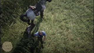 Red Dead Redemption 2 EPIC TORTURE Horse Poops on head