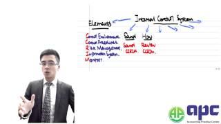ACCA P1 internal control system