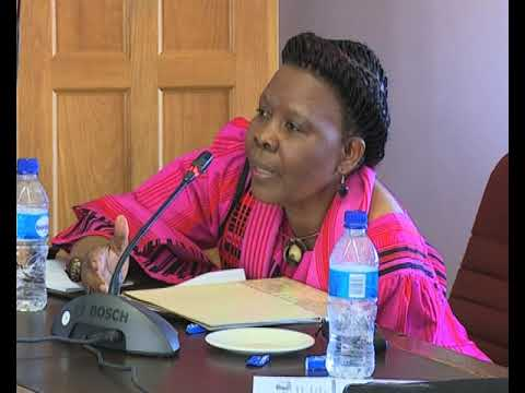 Some Parliamentarians express mixed feelings over NEPAD's peer review mechanism-NBC