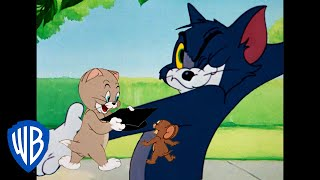Download Tom and Jerry Cartoon - Tom And Jerry | Lessons At Home! | Classic Cartoon Compilation | WB Kids