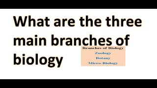 What are the three main branches of biology