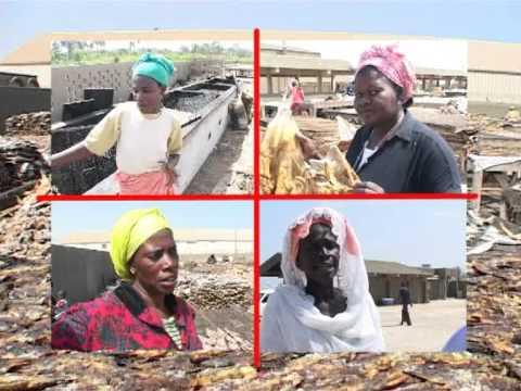 Child labour in Senegal ILO/IPEC's actions