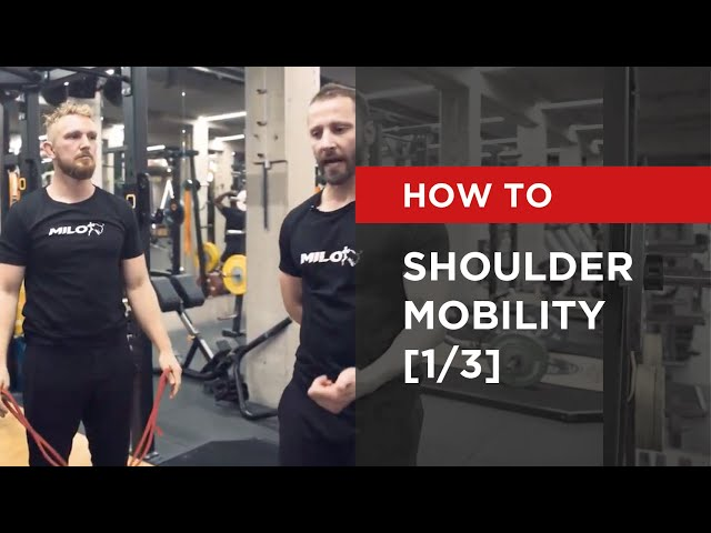 SERIES: Shoulder Mobility [1/3]