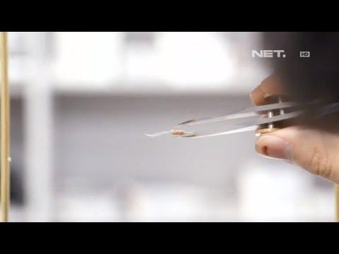 NET24 - Mengangkat Benda dengan Kekuatan Suara