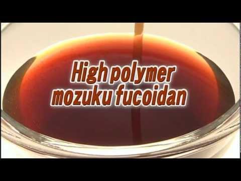 High polymer mozuku fucoidan PV - MARINE PRODUCTS KIMURAYA -