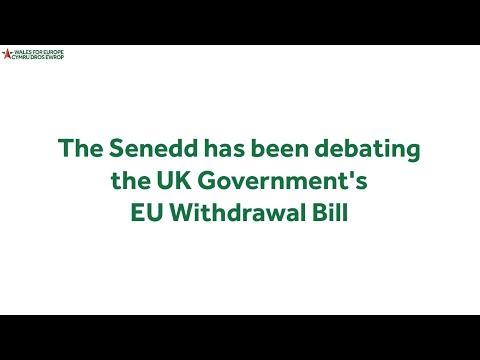 Senedd condemns EU Withdrawal Bill