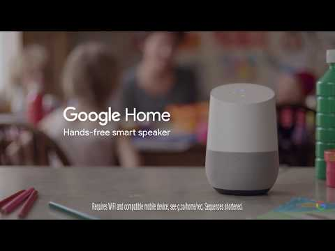 Google Home: What we're asking in June - What noise do guinea pigs make?