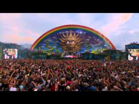 David Guetta live at Tomorrowland 2010