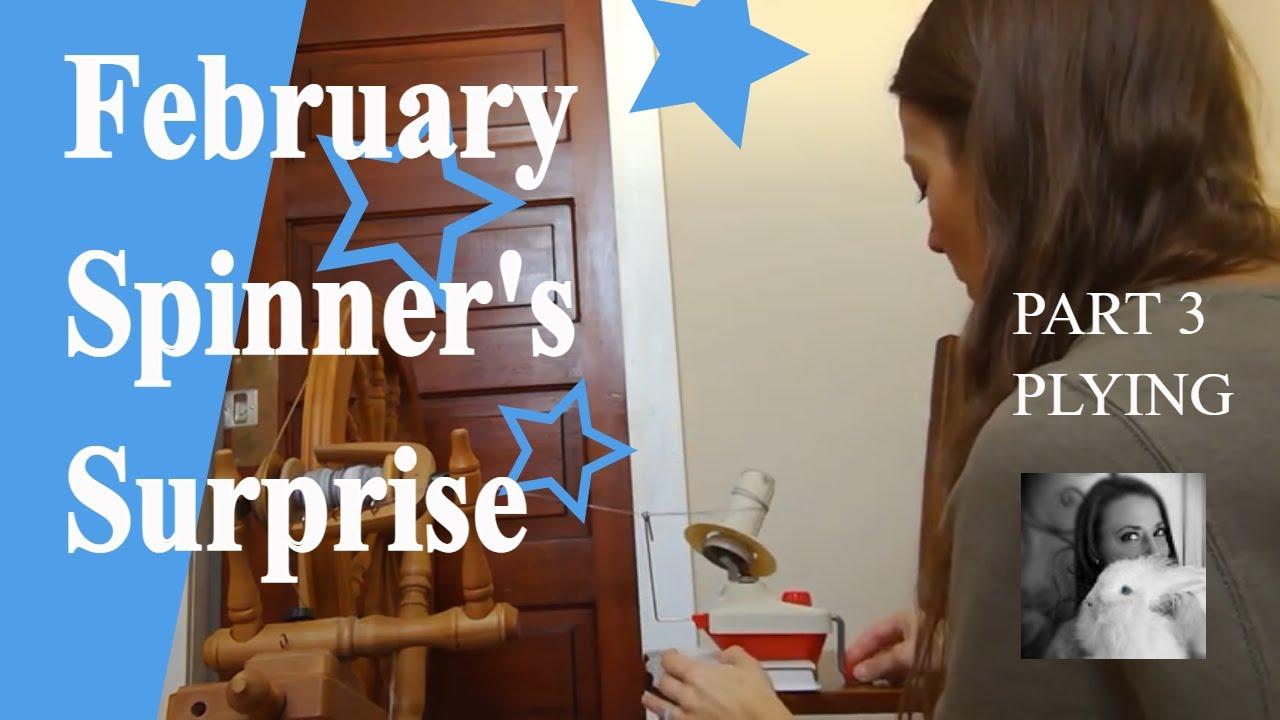 Part 3 February Spinner's Surprise