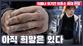 """'유기견 대모' 이용녀씨의 손을 보니 마음이 뭉클 """"아…"""