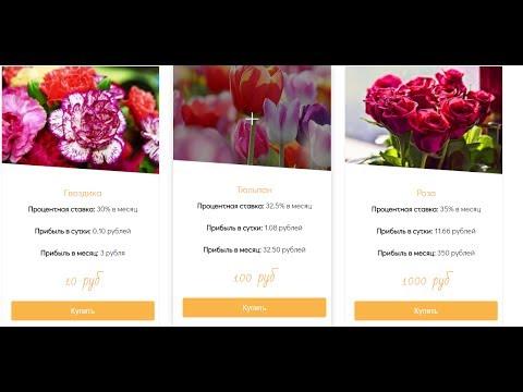 экономическая игра цветочный бизнес