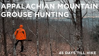Appalachian Mountain Grouse Hunting  45 days till hike