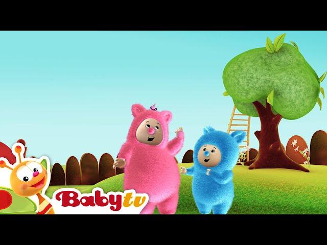 Billy Bam Bam | Vont à la cueillette aux orange | BabyTV (Français)