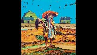 Tibetan Miracle Seeds - Ideas