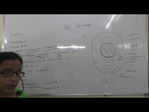 """cell Biology"" : For Class 9 10 & 11 Bio By Mamta Sharma"