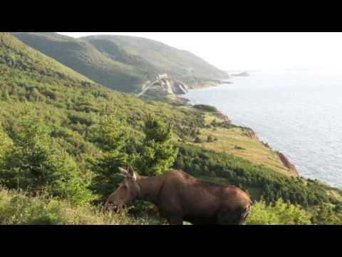 カナダ ケープ・ブレトン島の景色 Canada Cape Breton Island